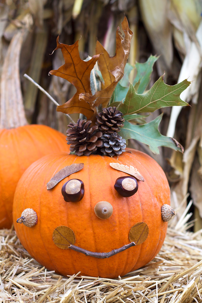 14 Epic No Carve Pumpkins You'll Want to Show Off, Adorable DIY Pumpkins with No Mess, Fall Decorations, Halloween Pumpkin Painting Ideas and Inspiration, with Creative Pumpkin Decorating ideas. #pumpkin #pumpkindecorating #halloween