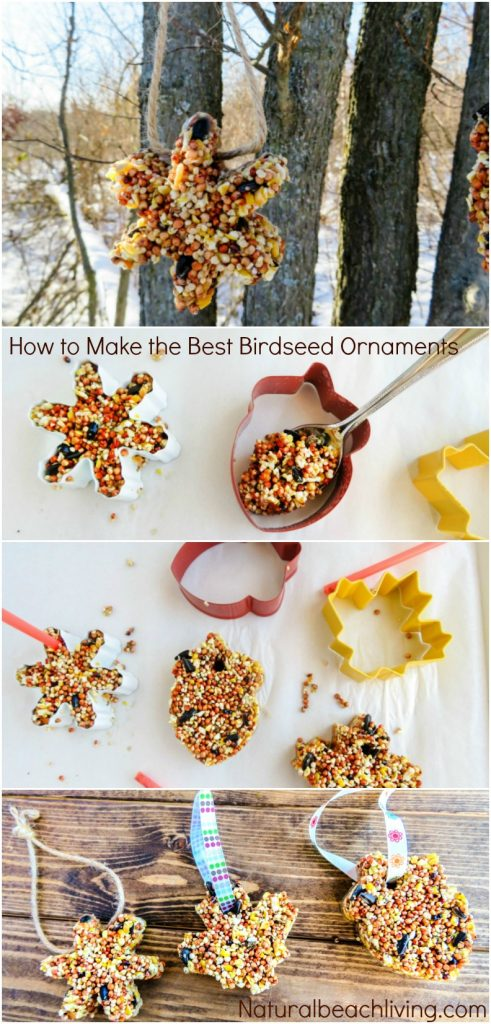 Easy Kid Made Bird Feeder Ornaments Everyone Loves, Heart Bird Treats, Heart bird feeder ornaments, Easy Homemade Bird Feeder Ornaments, This is a great winter activity for kids, Birdseed ornaments, DIY Bird Feeder for kids to make, Nature activities for kids, How to Make Bird Treats, How to Make Bird Feeder Ornaments with Kids, Birdseed Ornaments Recipe #birdseedornaments #Birdtreats #homemadebirdfeeders #birds #bird #Valentinesday