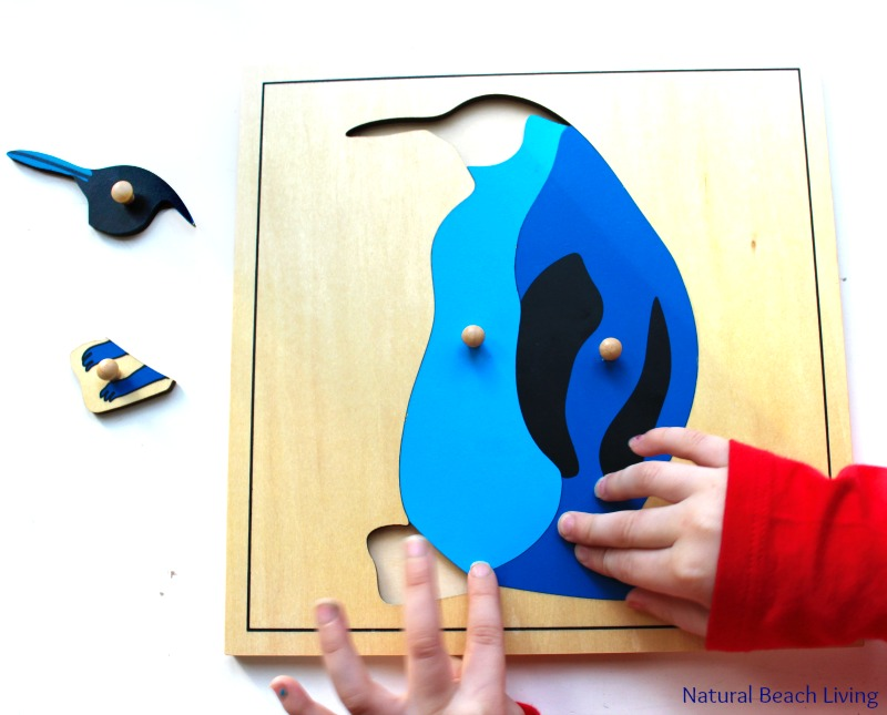 The Best Penguin Activities for Preschoolers and Kindergarten, Perfect winter activities for preschoolers, Hands on Antarctica Activities and ideas, Montessori preschool activities, Penguin preschool themes, Penguin Unit study for Kids, Penguin printables, Montessori Printables, #preschoolactivities #winteractivitiesforkids #Montessoriactivities