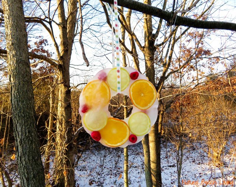 How to Make Beautiful Icy Homemade Bird Treats, Lovely DIY bird treat ornaments, These Easy bird treats will bring everyone joy, perfect nature activity