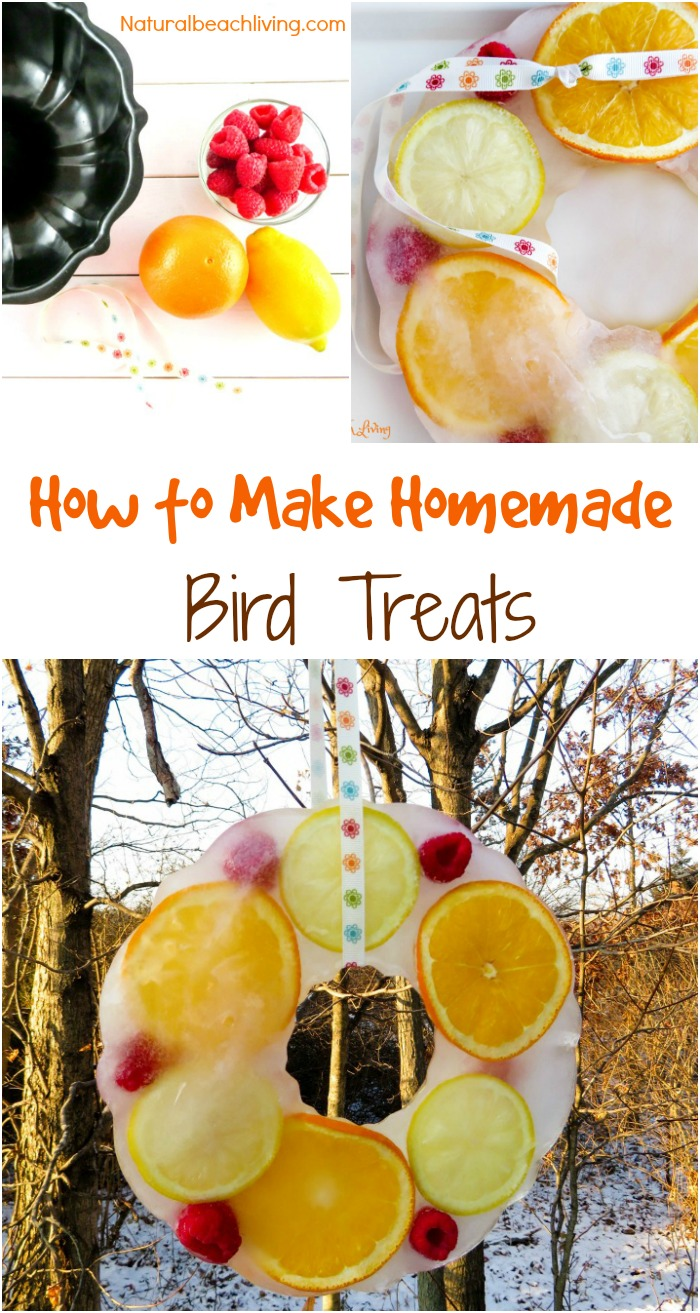 Homemade bird treats