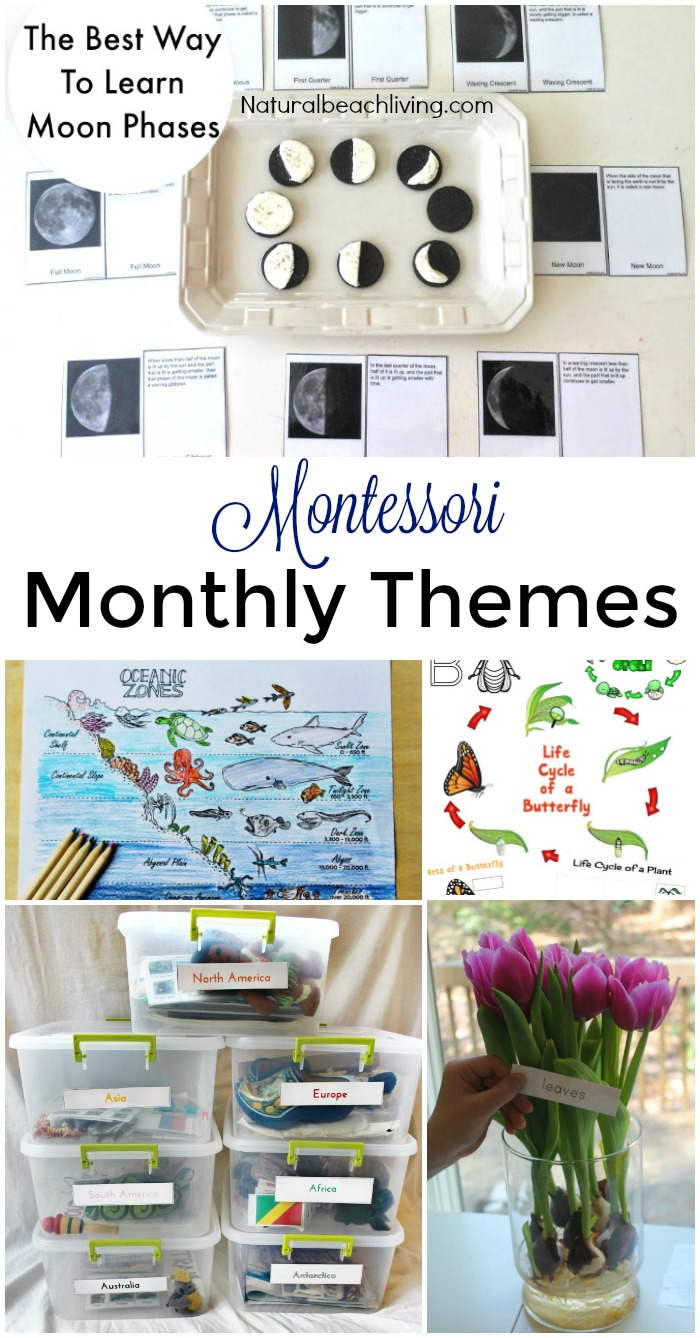 150+ Amazing Montessori Activities and Free Printables - Natural ...