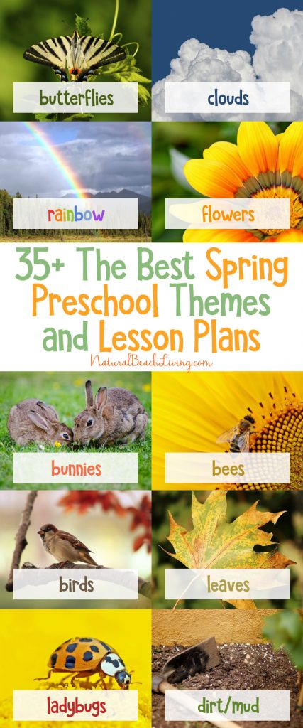 6 great Ideas for Spring Preschool Themes, Spring Preschool Activities, Preschool Lesson plans, packed full of fun Spring Preschool Crafts, Spring sensory play, Preschool Science, free printables, The Best Themes for Preschool, Preschool Lesson Plan Themes, Spring Lesson Plans for Preschoolers, Ladybug Preschool Activities, Rainbow Activities, Butterfly Activities, Backyard bird activities for Kids, Plants and Botany Activities for Kids