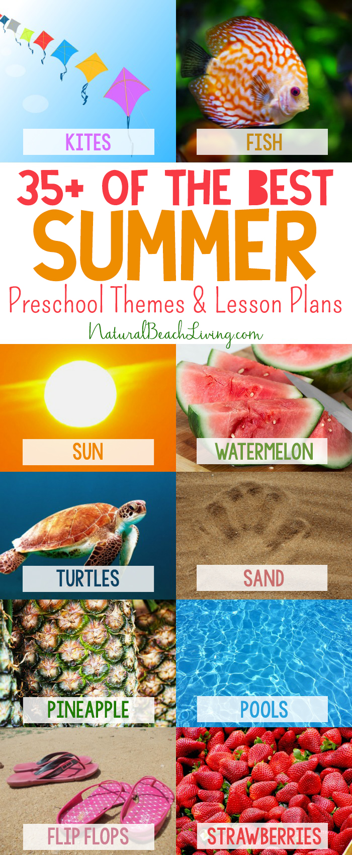 35+ Best Summer Preschool Themes and Activities, Free Printables, Preschool  Lessons and Ideas
