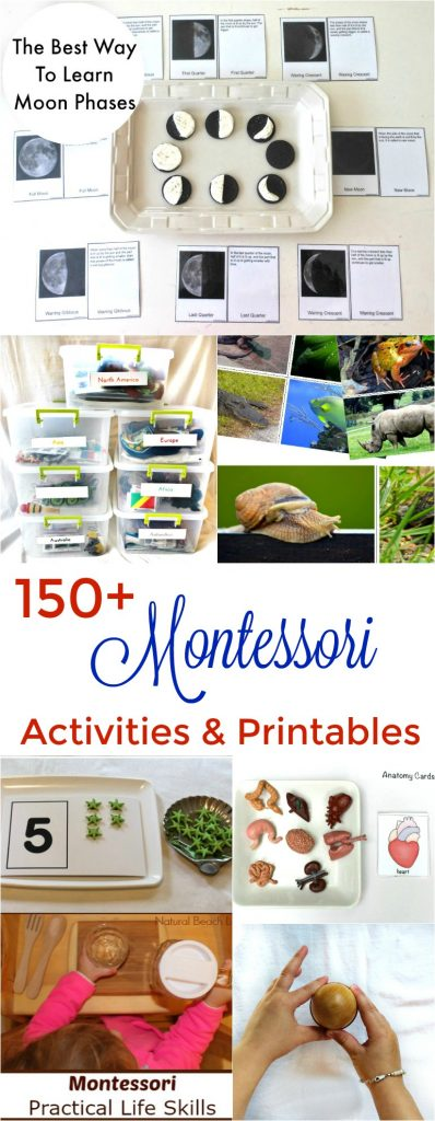 150+ Montessori activities and free printables
