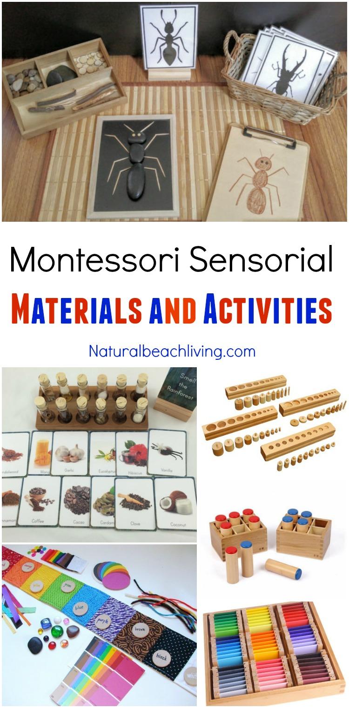 Montessori Sensorial Materials Every Child Will Love, Perfect Montessori Activities and Montessori Materials for Preschool, Sensory, Smelling bottles, Color