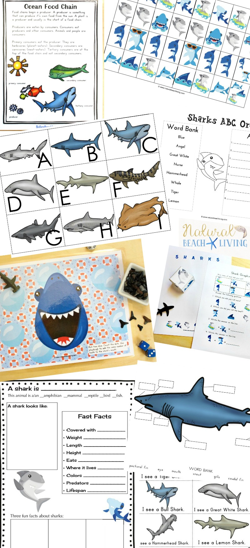 The Best Shark Printable Activities for Kids, Get ready for Shark Week with a Shark Unit Study and Shark Lesson Plans, These Shark Week Ideas have Alphabet Activities, Shark Facts and Information Printables, shark graphing and shark games. Plus your Shark printables and Writing Prompts