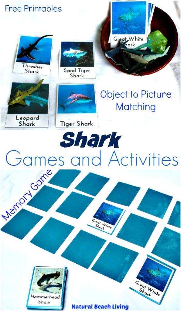 This is the place for Shark Activities and Shark Printables.for Kids, Lots of Shark Week Activities for Kids,printable shark template for making Shark Week Crafts, Plus, Shark Science, Shark Lesson Plans and Fun Shark Themed Preschool ideas