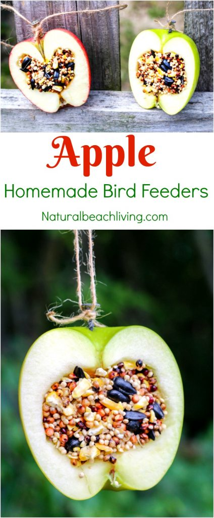 How to Make The Best Pine Cone Bird Feeder, These natural homemade bird feeders are a great hands on activity, Easy Organic Bird Feeder Craft, DIY Bird Feeder