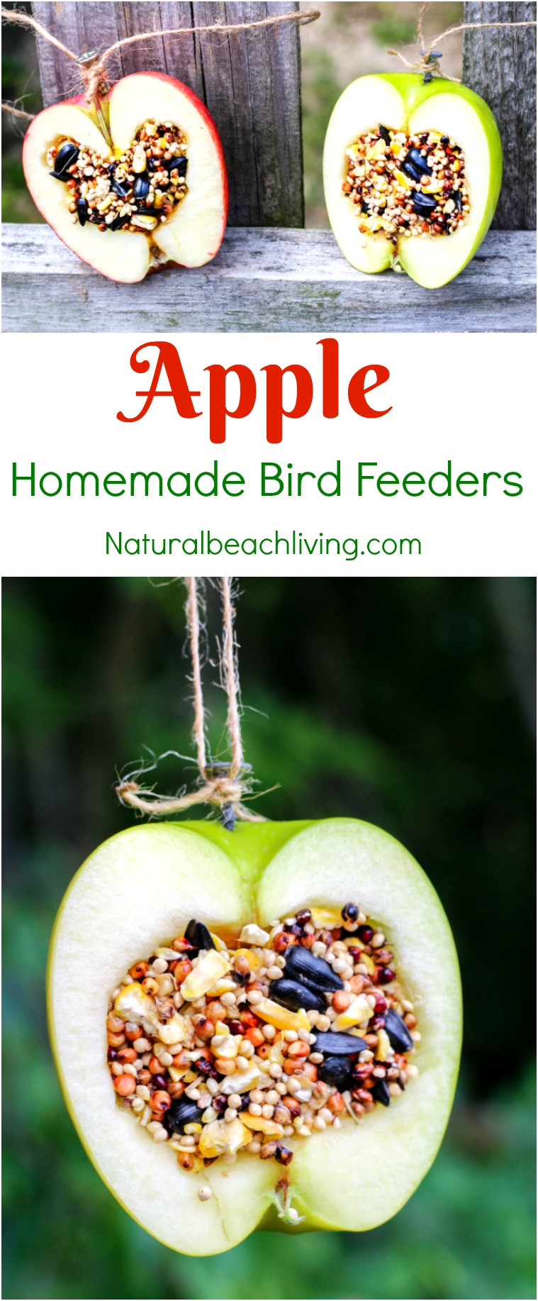 How to Make Apple Birdseed Homemade Bird Feeders, Apple Bird Feeders, These APPLE BIRDSEED BIRD FEEDERS ARE THE BEST! You can Invite the birds to your yard with these Easy bird feeders. DIY bird feeders are a great family craft and a fun way to learn about nature. Adding in apples for fall is an extra bonus and make a Great Fall Craft for Kids, Homemade Bird Treats, From How to Make bird seed ornaments to DIY birdseed ornaments and Apple Activities for Kids, we have hundreds of fall ideas and activities