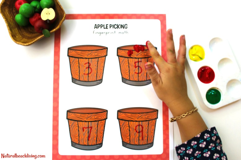 The Best Kindergarten and Preschool Apple Theme Unit, Fall Preschool themes, Preschool Lesson Plans Apples, Apple Activities Preschool, Apple Art, STEM,