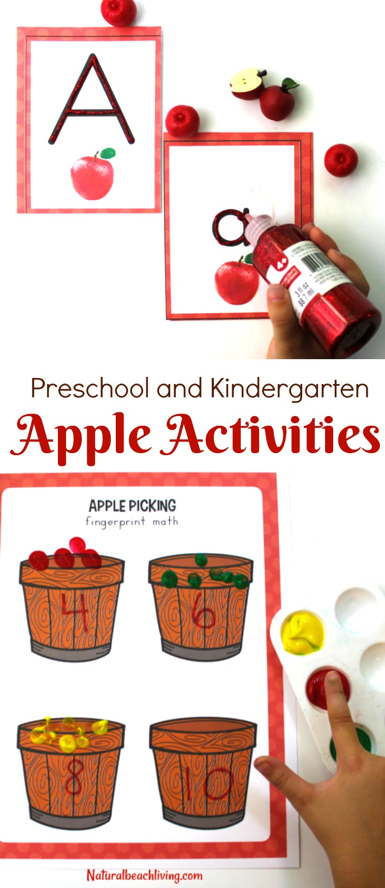 The Best Kindergarten and Preschool Apple Theme Activities
