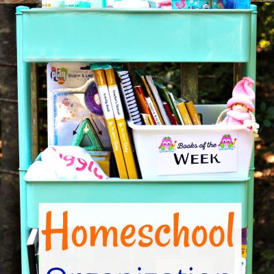 5 Homeschool Organization Tips for Successful Schooling (Free Monthly Binder Covers)