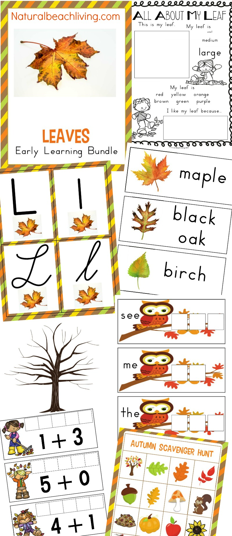 Fall Sensory Bin for Toddlers and Preschoolers, A Fall Sensory Bin is the perfect way for children to explore the fall season. Sensory activities are full of ways kids can learn about textures, sounds, smells, and colors. Easy fall sensory idea for kids
