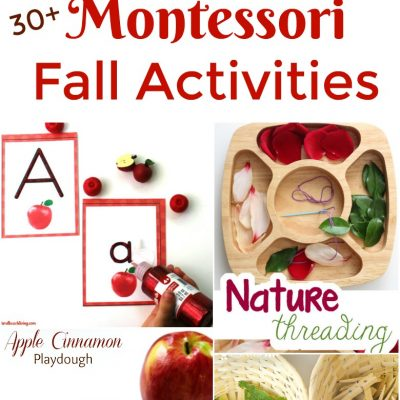 30+ Amazing Montessori Fall Activities for Preschool and Kindergarten