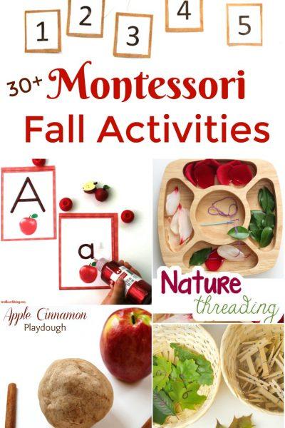 30+ Amazing Montessori Fall Activities for Preschool and Kindergarten