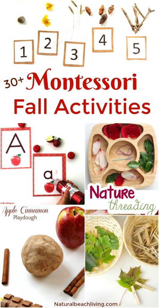 30+ Amazing Montessori Fall Activities for Preschool and Kindergarten, Montessori Fall Themes with Practical Life Ideas, Montessori Books, Montessori Fall Printables, Montessori Themes with hands on activities.