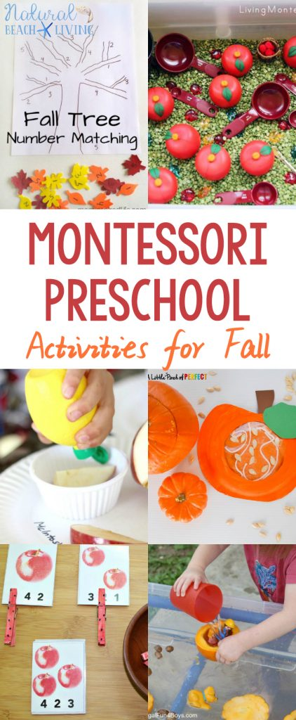 Montessori Preschool Activities for fall