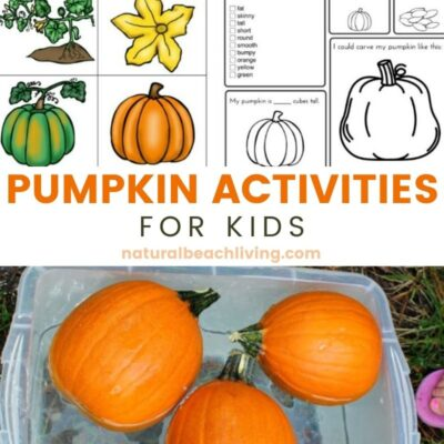 Pumpkin Activities for Kids – Pumpkin Lesson Plans (STEM)