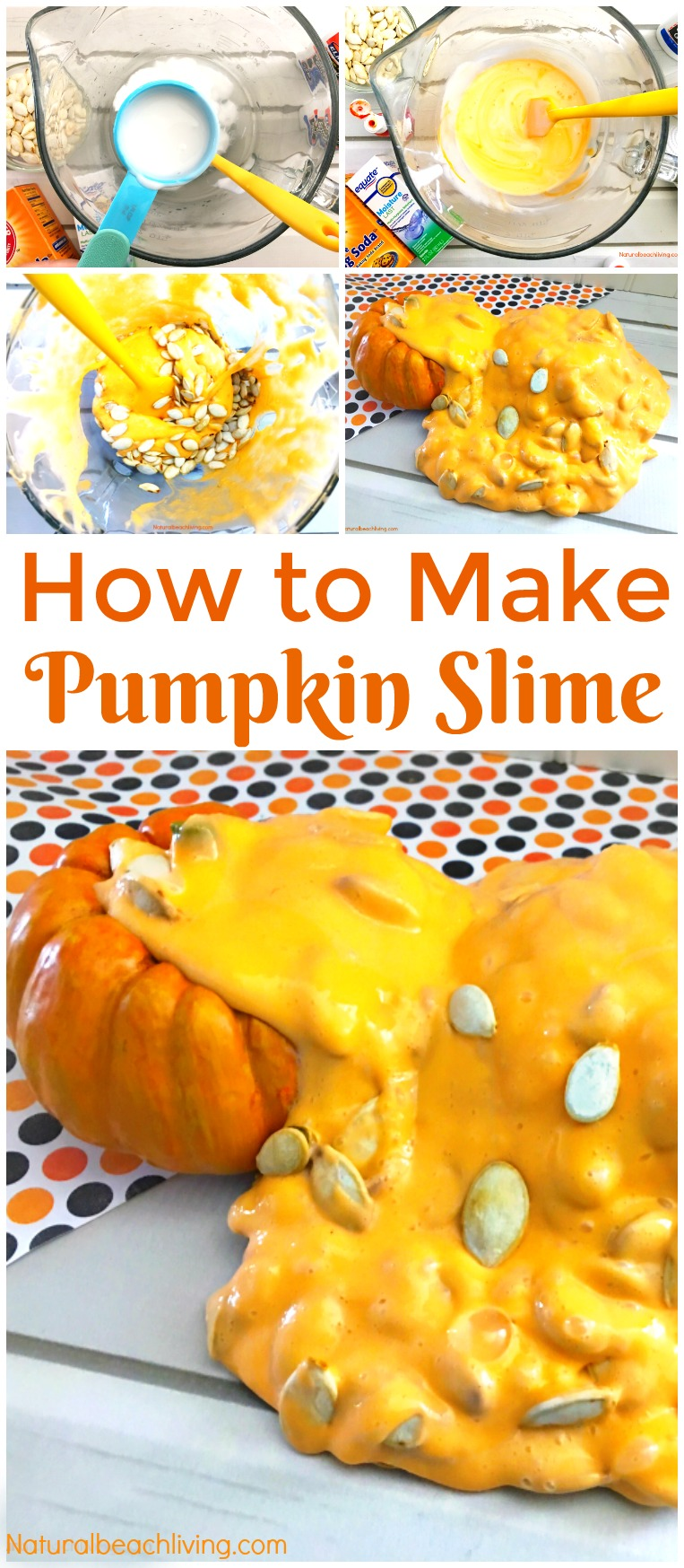 These Potato Stamping Pumpkins are so cute and make a perfect Halloween craft for toddlers and preschoolers, Easy Preschool Jack o Lantern Craft or Potato Stamping Art for Toddlers and Preschool. Fall Preschool Activity for Fine Motor Skills and SLIME
