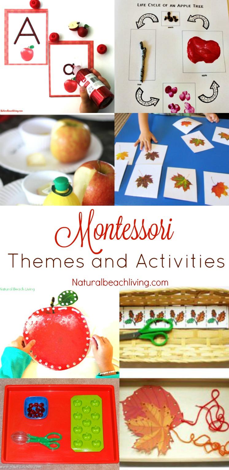Fun September Montessori Themes and Activities