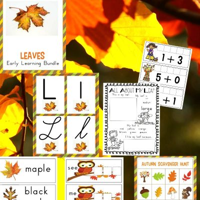 The Best Kindergarten and Preschool Leaf Theme Lesson Plan