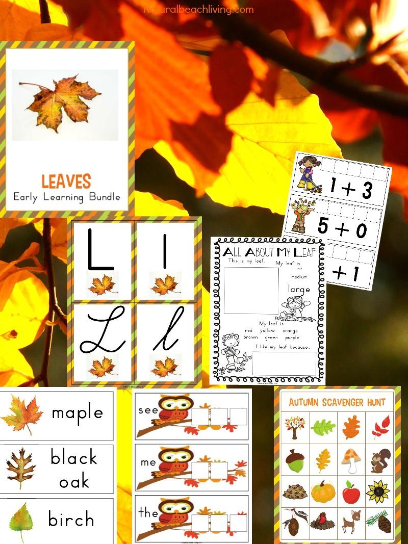 The Best Kindergarten and Preschool Leaf Theme Lesson Plan
