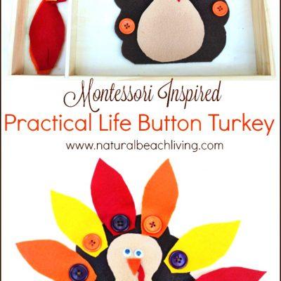 Montessori Practical Life Button Turkey for Preschoolers