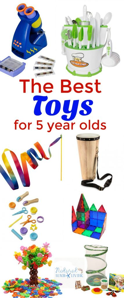 The Best Montessori Toys for 5 Year Olds - Natural Beach ...