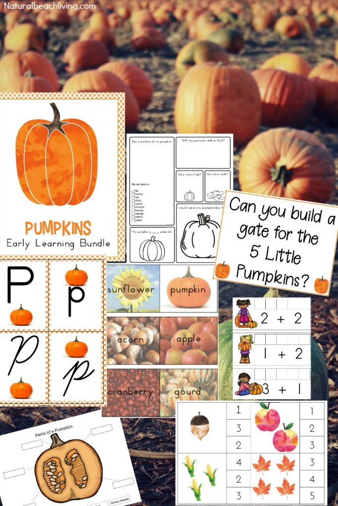 The Best Kindergarten and Preschool Thanksgiving Theme Lesson Plan, Preschool Thanksgiving activities, preschool themes, pumpkin STEM, pumpkin crafts, Movement cards, Thanksgiving writing center, alphabet tray, Montessori activities and more #Thanksgiving #stem #preschool #kindergarten