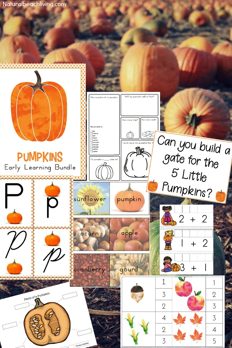 best kindergarten and preschool pumpkin theme lesson plan