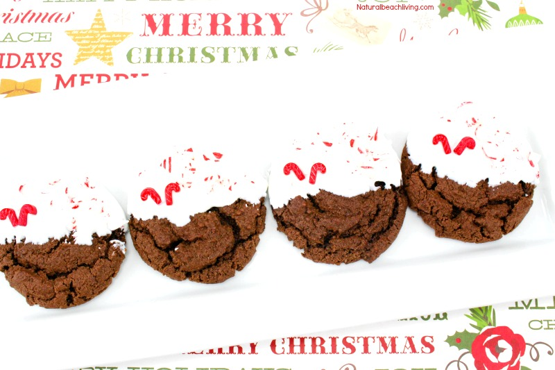 Easy Peppermint Cookies Recipe, Chewy Chocolate Cookies, Chocolate Peppermint Christmas Cookies, Chocolate Peppermint Cookies Recipes, Delicious Homemade cookies, Christmas Cookies, #Christmas #Christmascookies #Cookierecipe