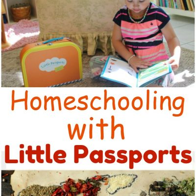 The Best Little Passports Subscription Box Review
