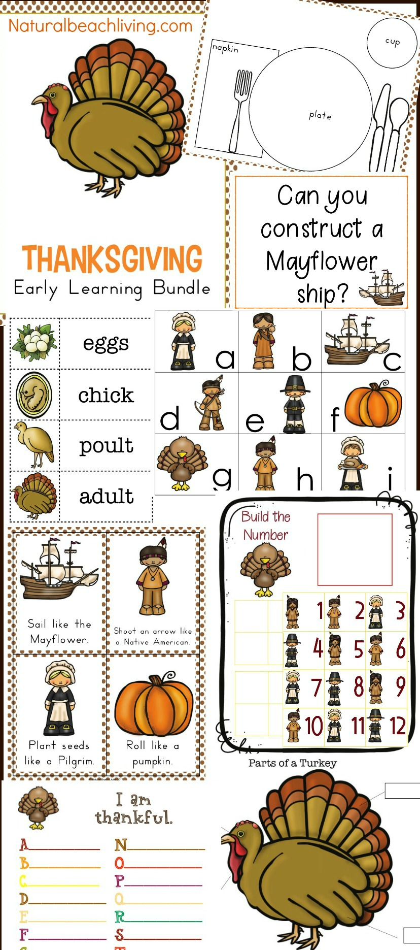 40+ Best Fall Preschool Themes and Activities - Natural ...