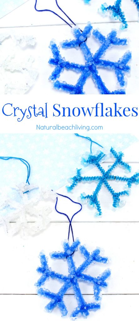 Make The Best Crystal Snowflake Ornaments, Borax Snowflake Crystals that kids can make for a Christmas Ornament or fun Science Project. Winter Science Experiments for Kids, Snowflake Theme, How to Make Snowflakes, Borax Crystal Snowflakes