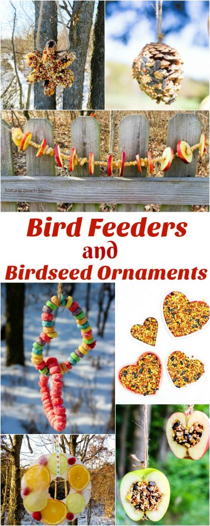 How to Make Apple Birdseed Homemade Bird Feeders, Apple Bird Feeders, Easy Homemade Bird Feeders, DIY Bird Feeders, These APPLE BIRDSEED BIRD FEEDERS ARE THE BEST! You can Invite the birds to your yard with these Easy bird feeders. DIY bird feeders are a great family craft and a fun way to learn about nature. Adding in apples for fall is an extra bonus. Great Fall Craft for Kids, Homemade Bird Treats, How to Make bird seed ornaments, DIY birdseed ornaments, Birdseed ornament recipe