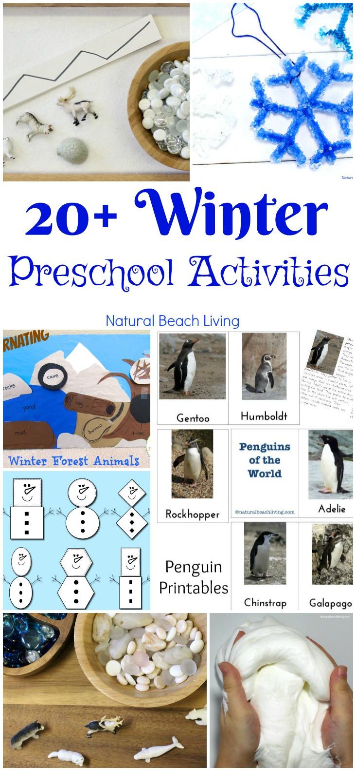30+ January Preschool Themes and Activities Kids Love