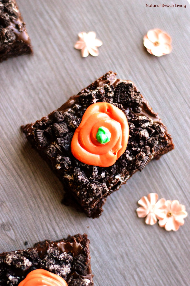 Carrot Garden Brownies – Best Carrot Patch Brownies Recipe
