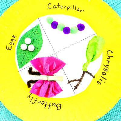 Easy Butterfly Life Cycle Craft Kids Love – Paper Plate Craft