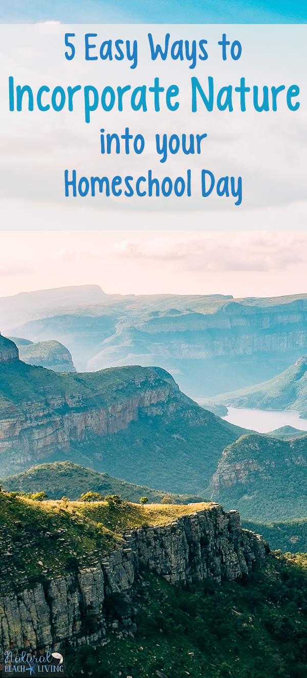 Easy Ways to Incorporate Nature Into Your Homeschool Day