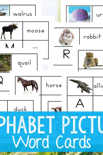 Alphabet Printable Picture Cards – Visual Word Cards