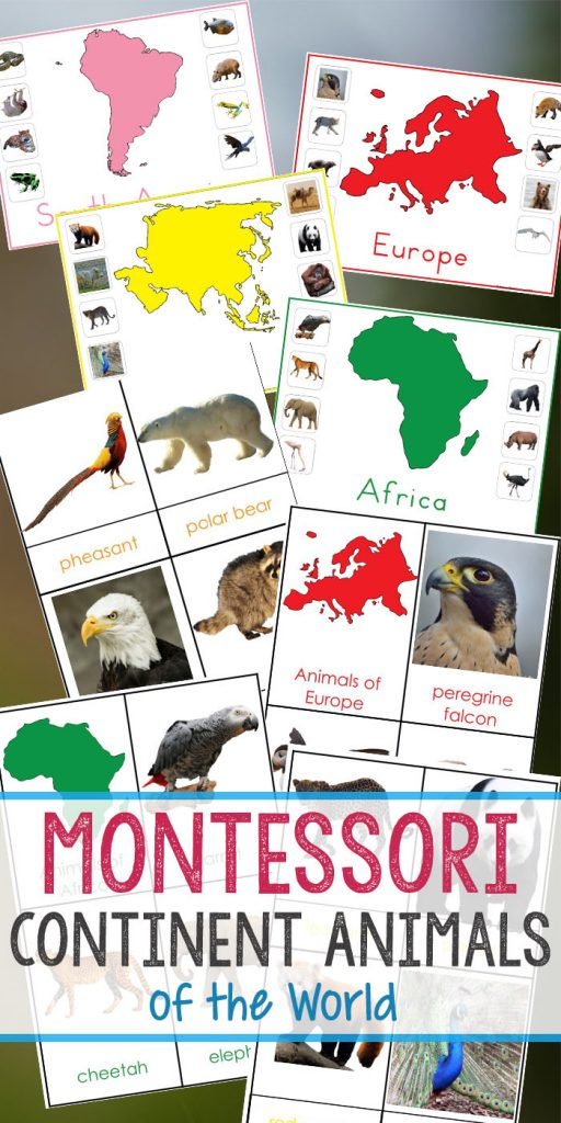 Montessori Animals and Continents Printables, Great Hands-on activities for learning all about animals and continents. Animals continents 3 part cards, animals and their continents activities, Montessori animals of seven continents, Montessori Geography activity sheets, what animal can be found on every continent, Montessori continents printables