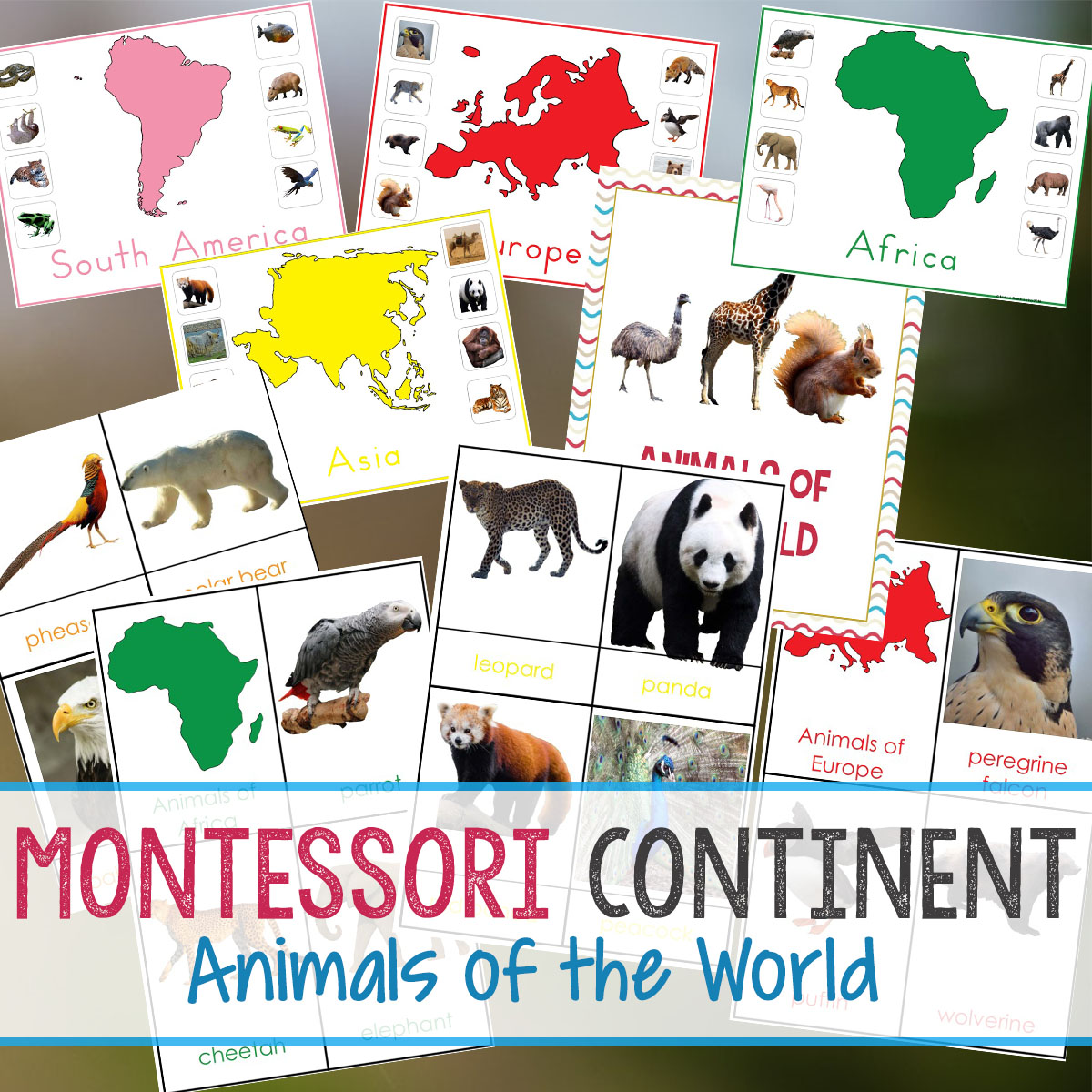 Montessori Animals and Continents Printables and Activities