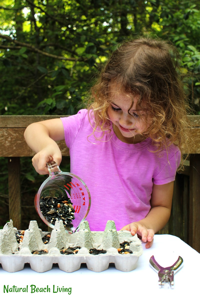 Over 30 Outdoor Spring Activities to do with Kids, Check out this fun list of spring outdoor activities for kids. You'll find loads of educational and entertaining ideas, from making and planting seed bombs to feeding the birds, and outdoor science projects.