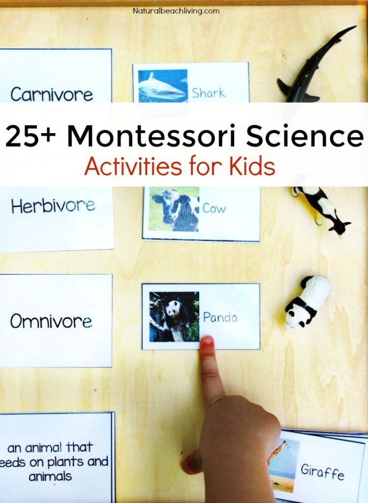 25 Montessori Science Activities And Experiments For Kids