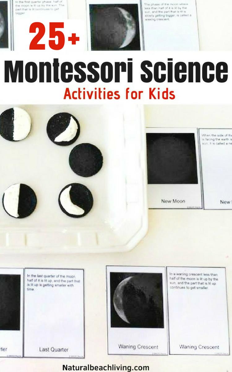 12 months of Montessori Learning, practical life, Montessori geography, Montessori Language Arts, Botany, Sensorial, Zoology, Music, Montessori Spaces, Montessori Math, Biology, History, Fine Arts, Maria Montessori, Montessori activities