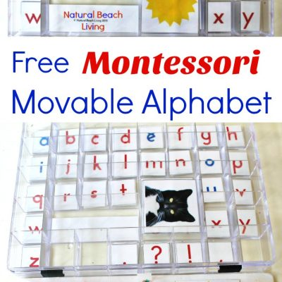 DIY Montessori Movable Alphabet (Free Printables)