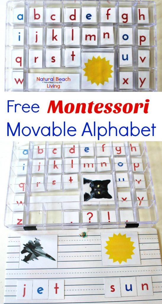 Free Montessori Movable Alphabet, Montessori Language Arts and Montessori Alphabet Printables for preschool and kindergarten, Montessori Preschool Activities, Montessori Toddler Activities, Montessori Materials, Montessori activities, moveable alphabet printable, moveable alphabet picture cards, Montessori moveable alphabet, moveable alphabet cards, Montessori alphabet cards, how to use Montessori moveable alphabet