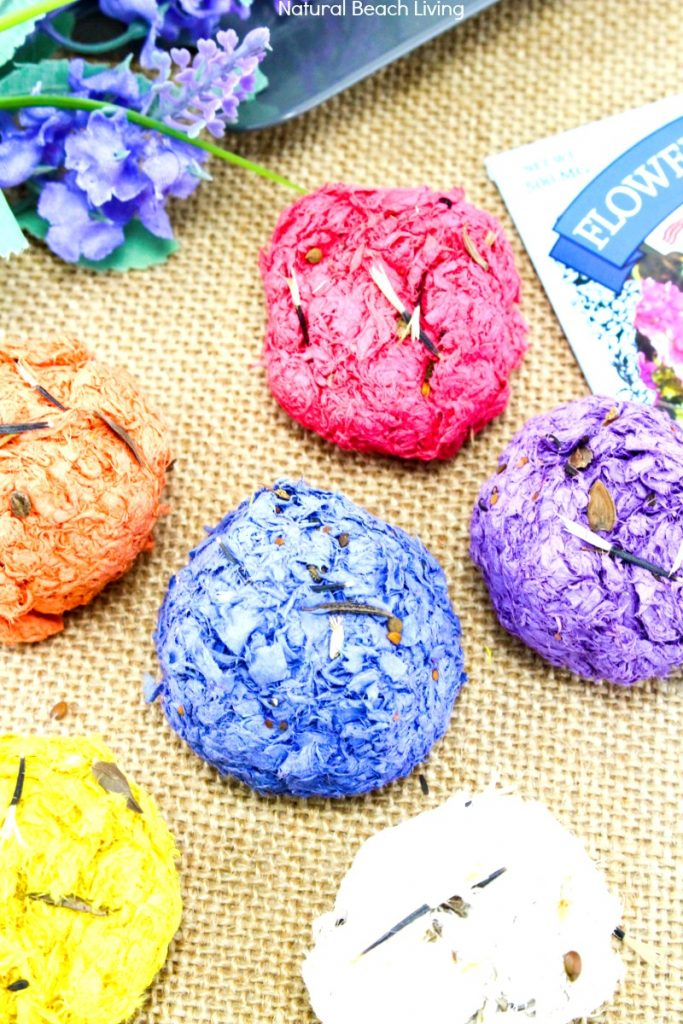 Are you ready to learn How to Make Seed Bombs? You'll be amazed at how easy this Seed Bombs Recipe is. Flower Seed Bombs, Seed bombs are perfect to make for spring! You can use recycled paper which is great for the Earth and helping the environment. How to Make Seed Bombs with Construction Paper for a fun Earth Day Project. Gardening with Kids Ideas