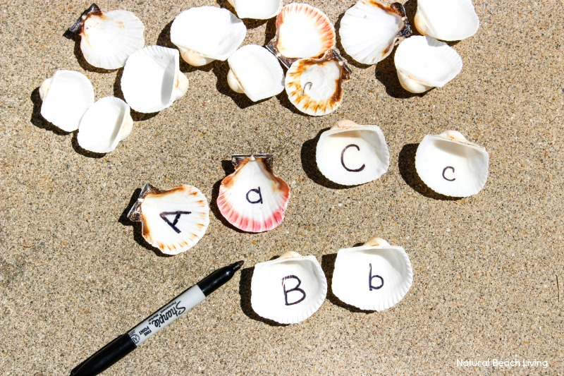 Letter Matching Seashell Sensory Bin for Preschoolers and Kindergarten, an easy to set up ocean theme sensory bin, sensory alphabet activities, sensory activities for letter recognition, alphabet sensory bin, Ocean Theme Preschool and Seashell Activities for Kids
